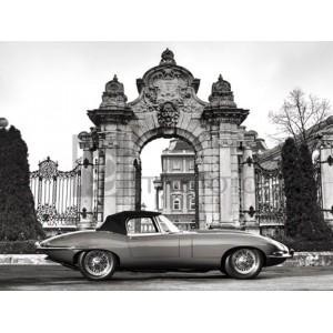 Gasoline Images - Vintage sports-car 1