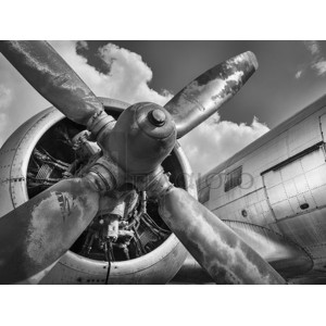 Anonymous - Vintage aircraft propeller