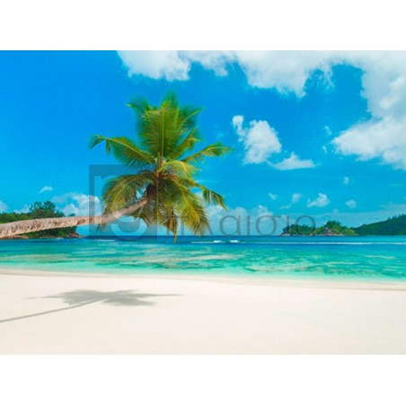 Anonymous - Tropical beach, Seychelles (detail)