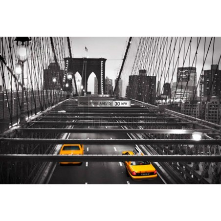 Anonymous - Taxi on Brooklyn Bridge, NYC