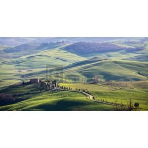 Vadim Ratsenskiy - A road in Tuscany