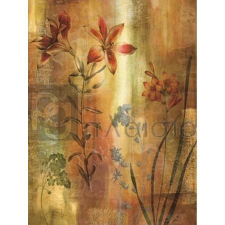 John Seba - Tulip Garden I