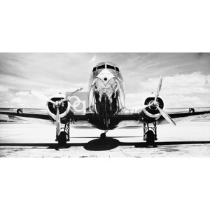 Philip Gendreau - Passenger Airplane on Runway