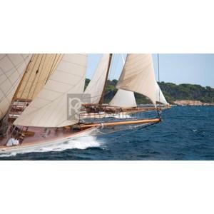 Anonymous - Vintage sailboats raicing