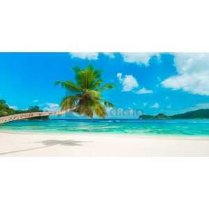 ANONYMOUS - Tropical beach, Seychelles