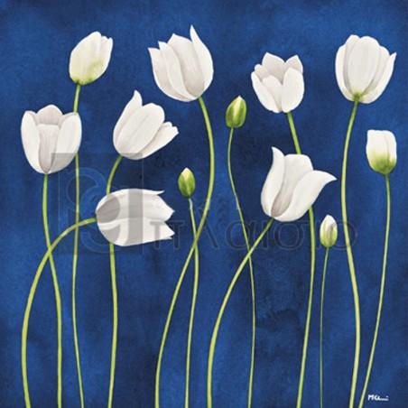Maria Grazia Luffarelli - Tulipani Danzanti