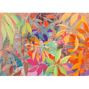 Italo Corrado - Giungla colorata