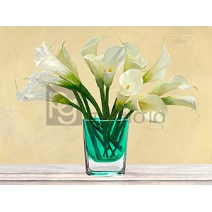 Andrea Antinori - White Callas in a Glass Vase