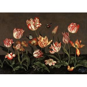 Johannes Bosschaert - Still Life with Tulips