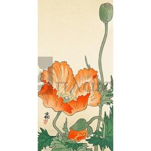 Ohara Koson - Poppies