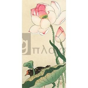 Ohara Koson - Lotus Flowers