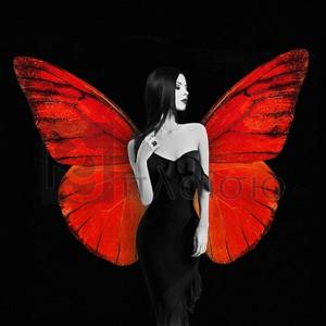 JULIAN LAUREN - Winged Beauty 2