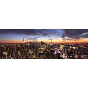 Anonymous - New York City Panorama