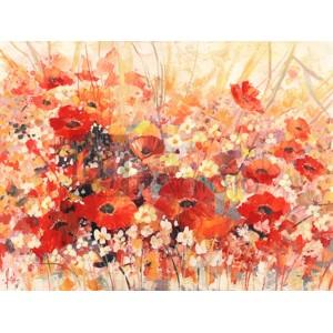Luigi Florio - Campo di fiori