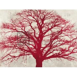 Alessio Aprile - Purple Oak