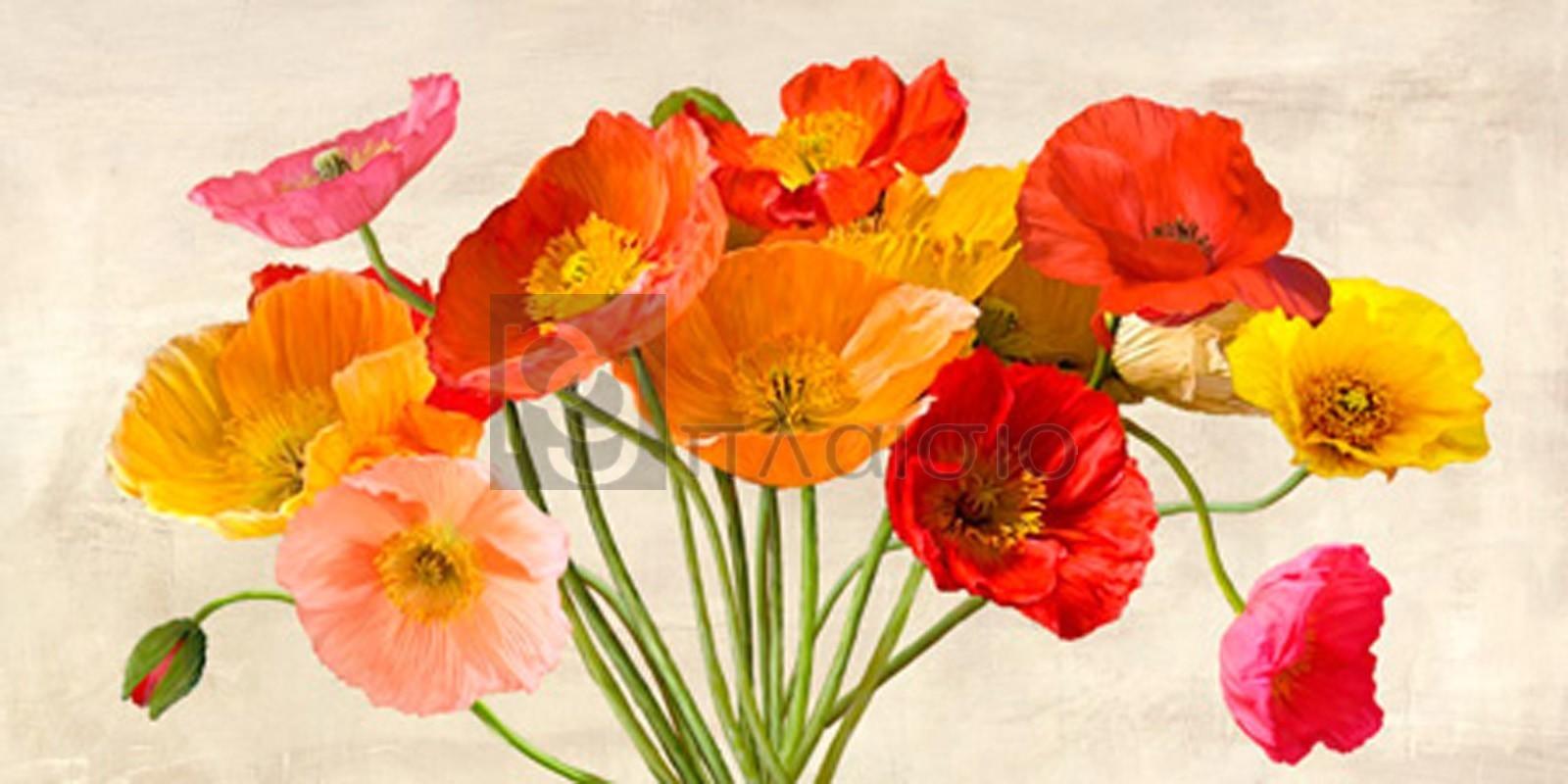 Luca Villa - Poppies in Spring