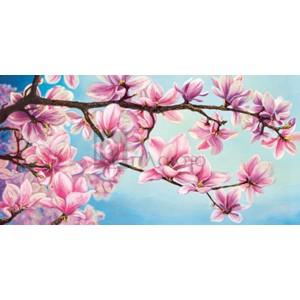 Sara J. Cortese - Magnolia in fiore