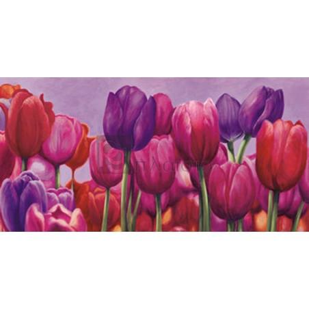 Sara J. Cortese - Campo di tulipani