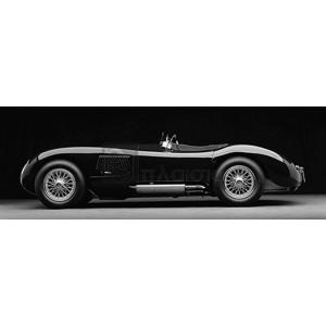 Don Heiny - 1951 Jaguar C-Type (BW)