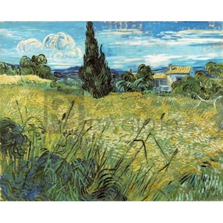 Vincent Van Gogh - Wheat Field