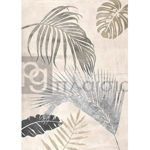 Eve C. Grant - Palm Leaves Silver II