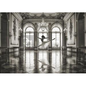 Julian Lauren - Ballerina in a palace hall