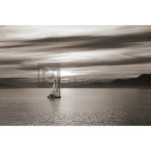 Pangea Images - Set Sails