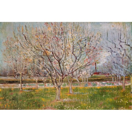 Vincent Van Gogh - Orchard in blossom