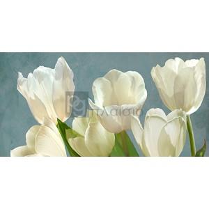 Luca Villa - White Tulips on Blue