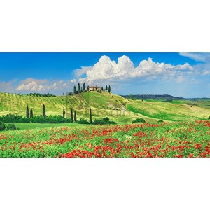 Frank Krahmer - Farmhouse with Cypresses and Poppies, Val d'Orcia, Tuscany