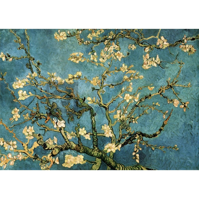 Vincent Van Gogh - Mandorio in fiore