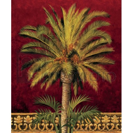 Rodolfo Jimenez - Canary Palm