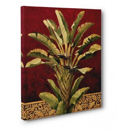 Rodolfo Jimenez - Traveler's Palm