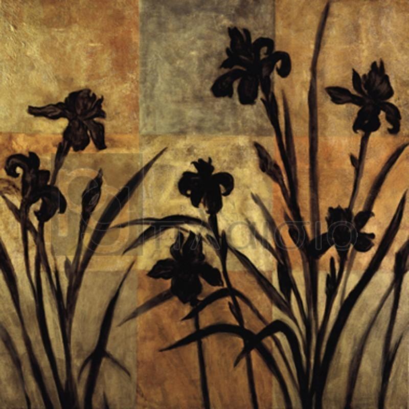 Erin Lange - Iris Silhouette IΙ