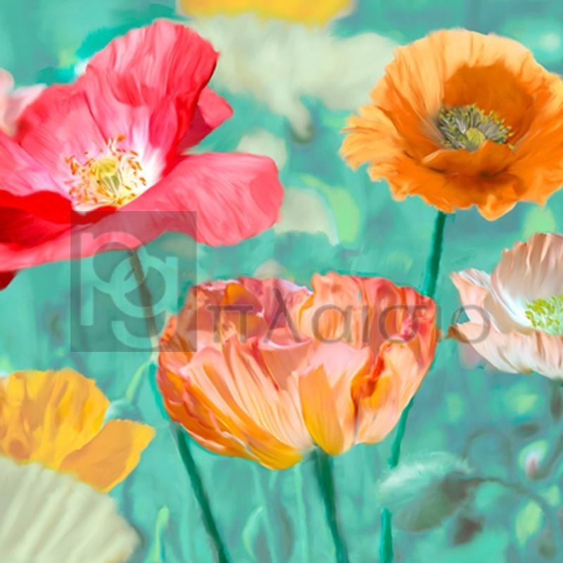 Cynthia Ann - Poppies in Bloom II