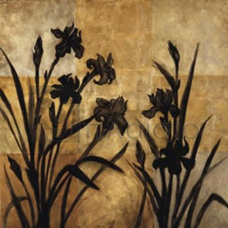 Erin Lange - Iris Silhouette I