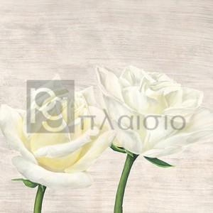 Jenny Thomlinson - Classic Roses II