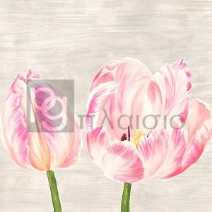 Jenny Thomlinson - Classic Tulips I