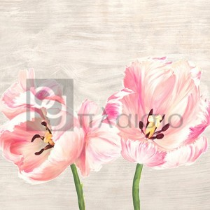Jenny Thomlinson - Classic Tulips II