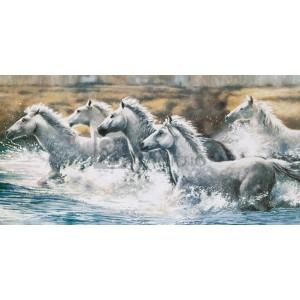 Ralph Steele - Running Wild