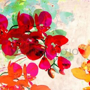 Kelly Parr - Orchidreams (detail)