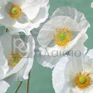Leonardo Sanna - Poppies on Mint I
