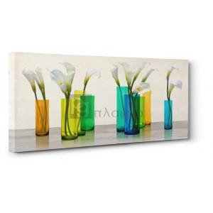 Cynthia Ann - Callas in crystal vases