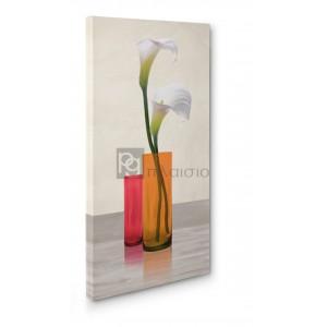 Cynthia Ann - Callas in crystal vases II