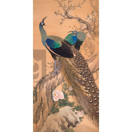 Imao Keinenimao Keinen - A Pair of Peacocks in Spring