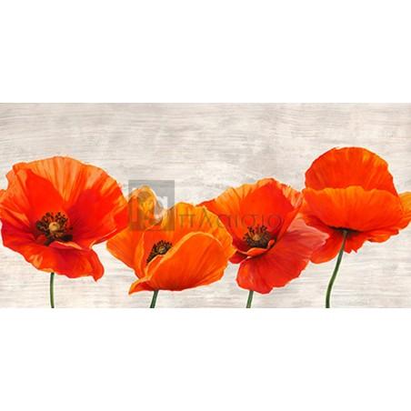 Jenny Thomlinson - Bright Poppies