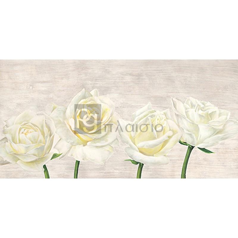 Jenny Thomlinson - Classic Roses