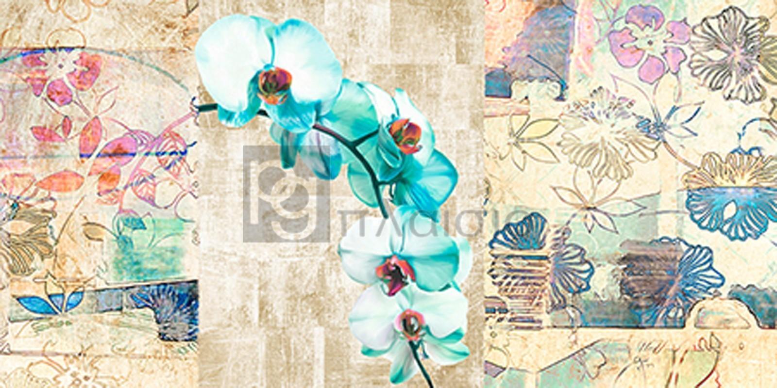 Kelly Parr - Kaleidoscope Orchid II