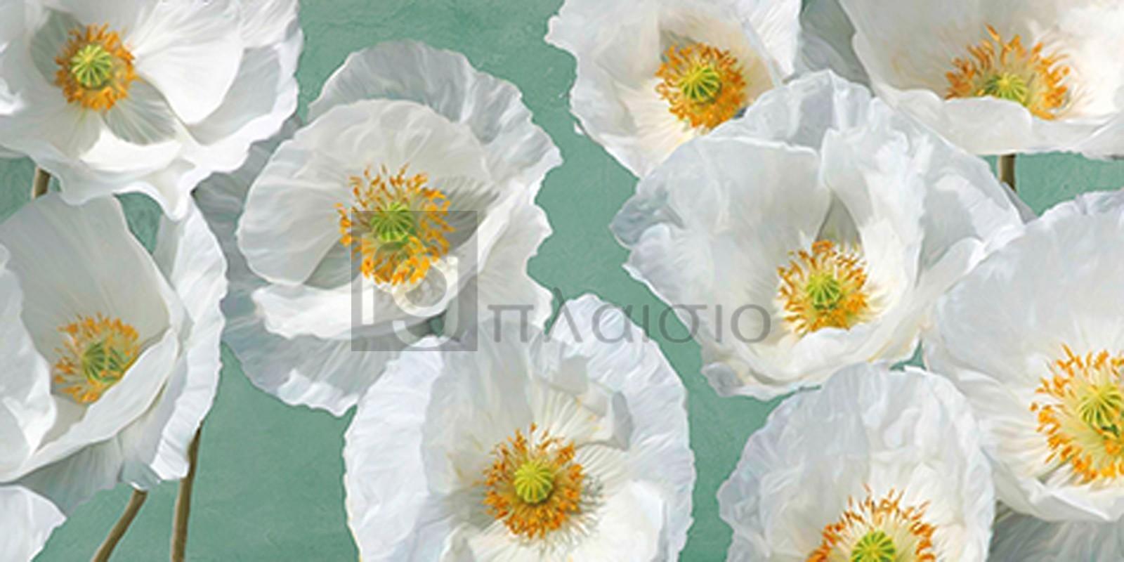 Leonardo Sanna - Poppy Arrangement (Mint)