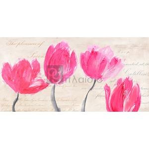 Muriel Phelipau - Classic Tulips